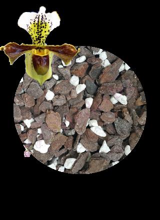 Субстрат за орхидеи Пафиопедилум