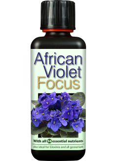 FOCUS Тор за Африкански теменужки / Сентполии
