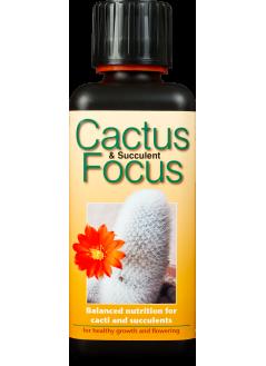FOCUS Тор за кактуси и сукуленти