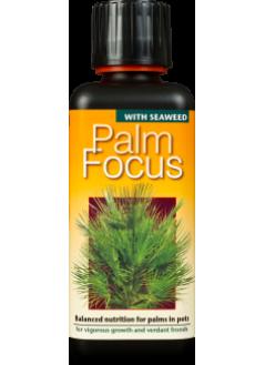 FOCUS Тор за палми